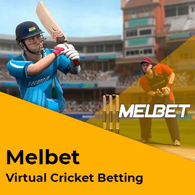 Virtual Cricket India